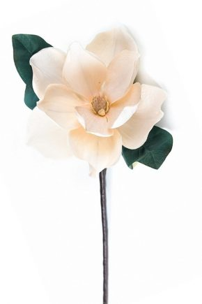 floare-artificiala-magnolie-crem-h-60-cm-1